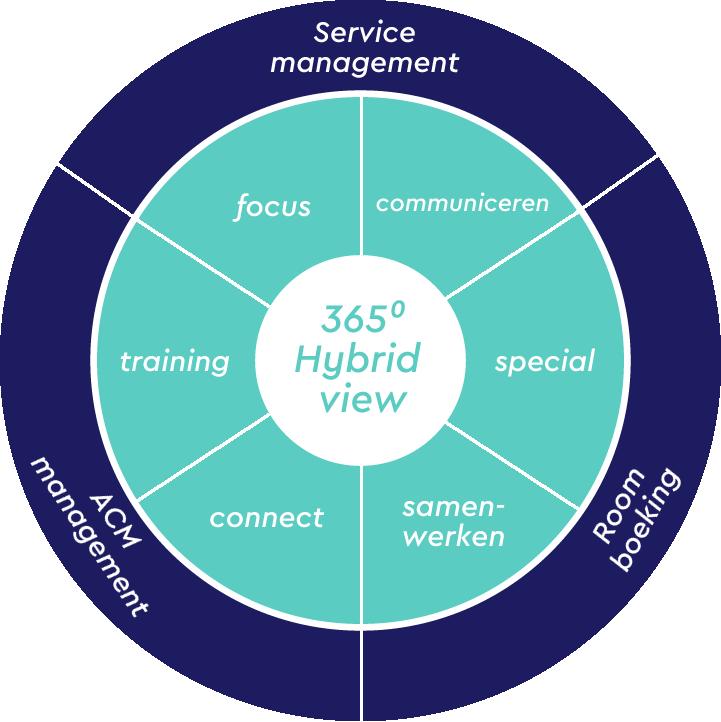 Hybrid view